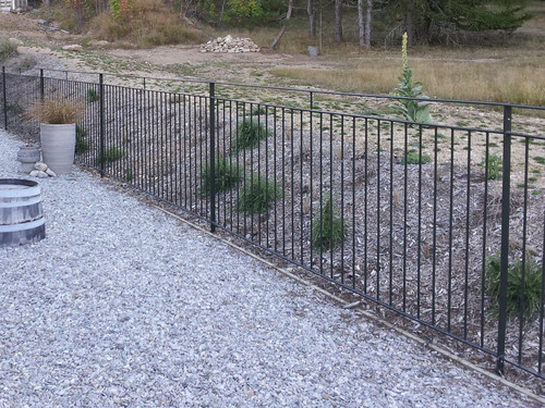 Modern garden fence