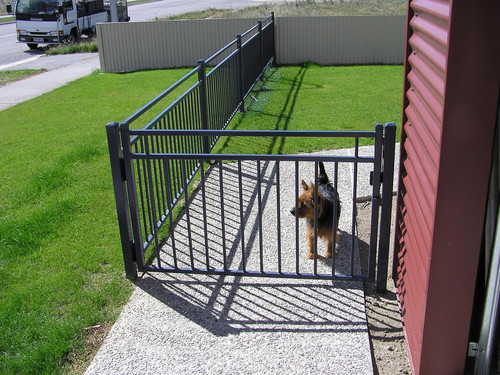 Fence and gate to secure pets