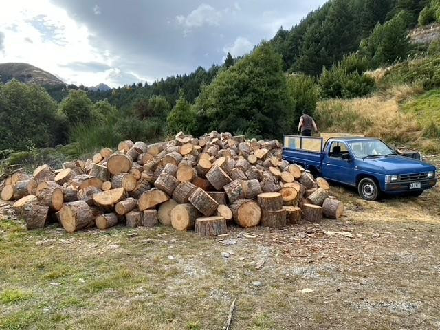 A giant pile of wood in Queenstown for donation to the community