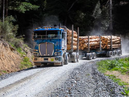 Dynes logging truck