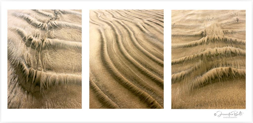 Windswept - Papatowai Beach Catlins (LE)