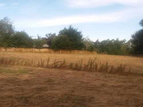 Lavender Row Farm as bare land