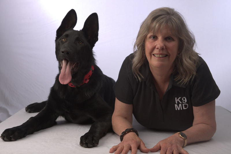 K9 Medical Detection NZ