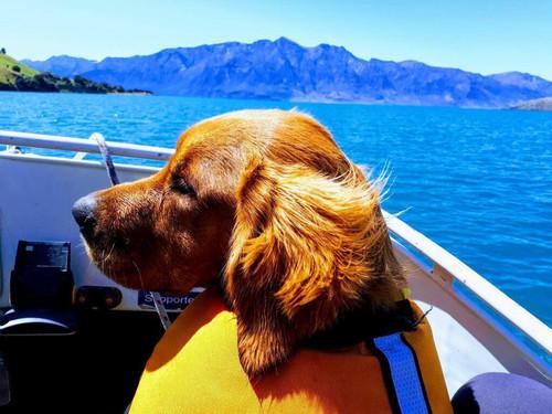 Magic on a boat