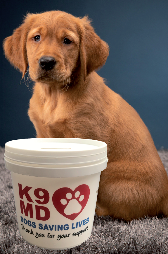 Support K9MD through fundraising