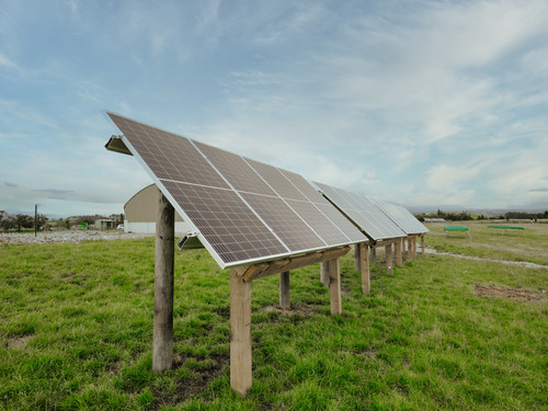 Solar Panels at Bowalley Free Range farm power our chicken houses