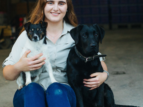 Beau and Pearl with Anna in the packing shed