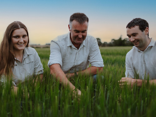 Anna, Brent and Tim from Bowalley Free Range farm inspecting the crop yield
