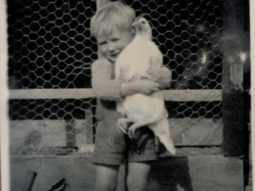 A historical picture of the Craig family playing with a beloved chook